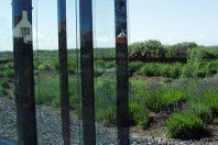 Tuin Zandvoort